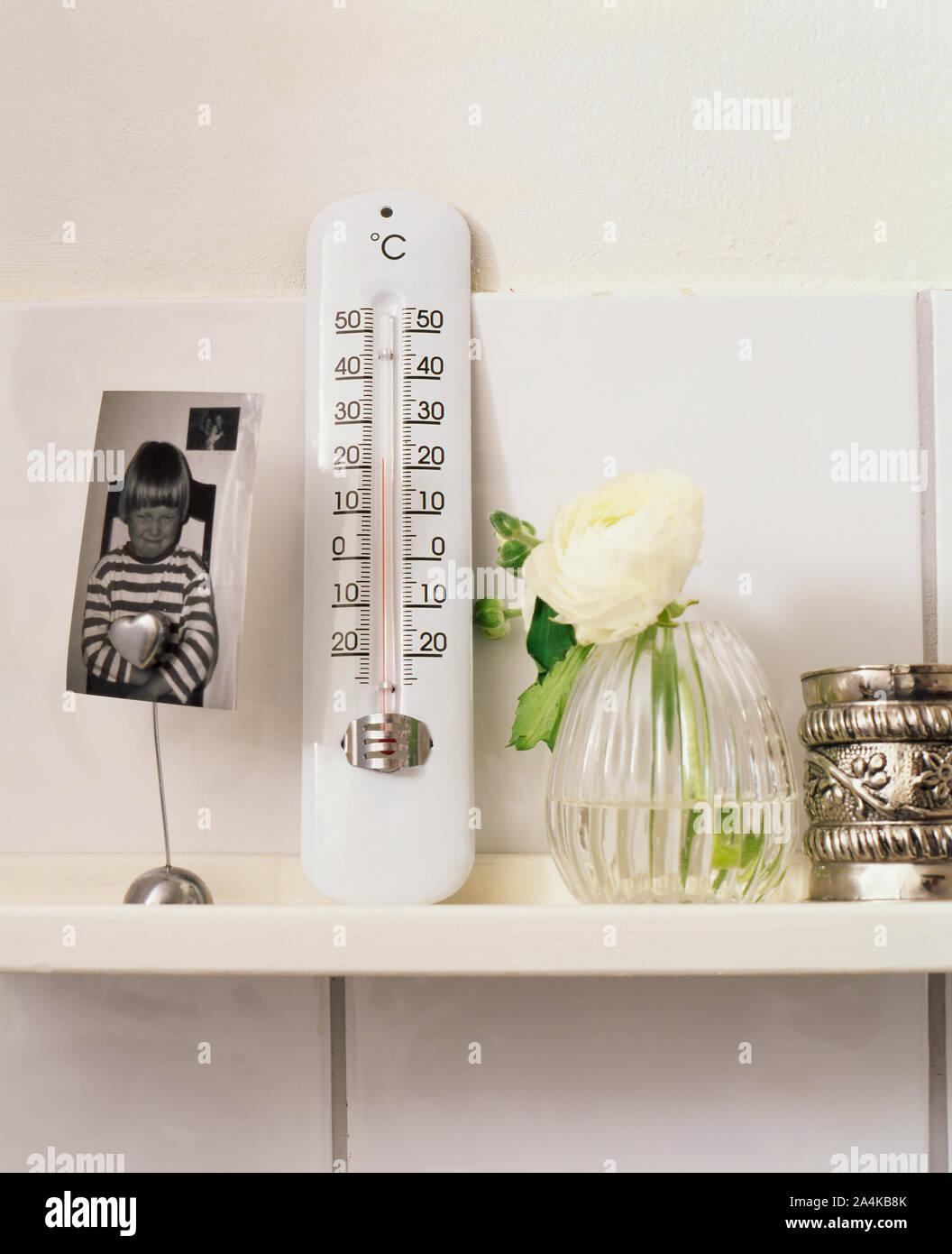 Thermomètre sur une étagère Banque D'Images