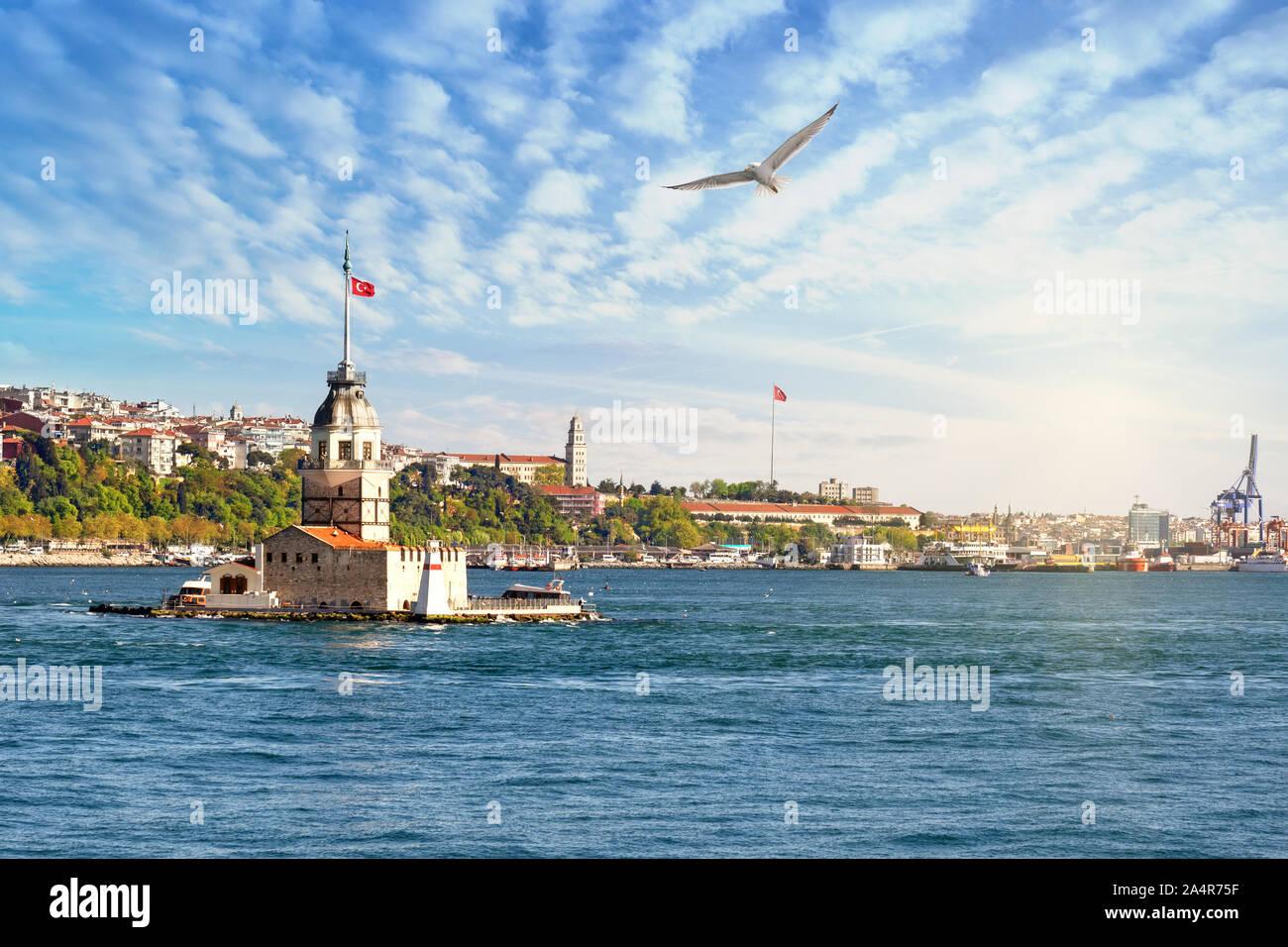 Tour dans le détroit du Bosphore sous le soleil clair. Mouette dans le ciel. Istanbul, Turquie Banque D'Images