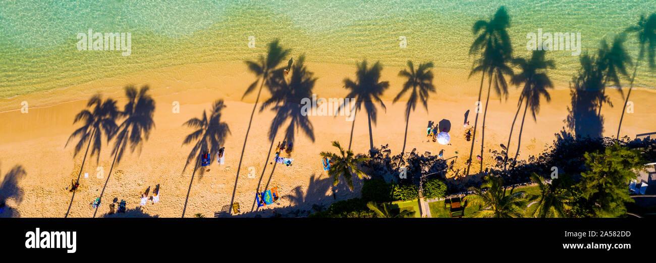 Vue aérienne de l'ombre des palmiers sur la plage Lanikai tropical, Kailua, Oahu, Hawaii Islands, USA Banque D'Images