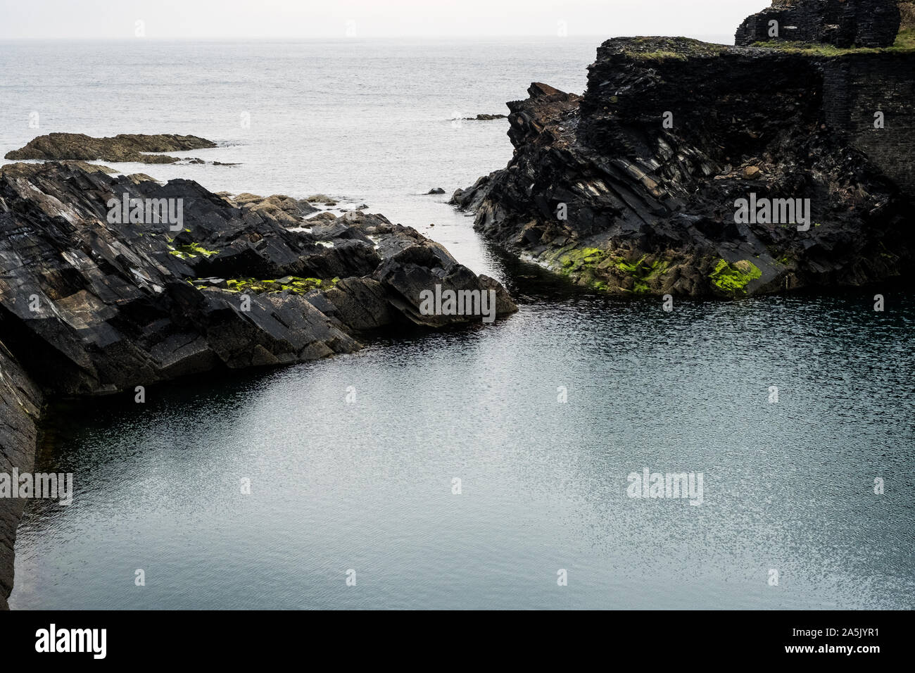 Falaise sur la côte de Pembrokeshire, Pays de Galles, Royaume-Uni. Banque D'Images