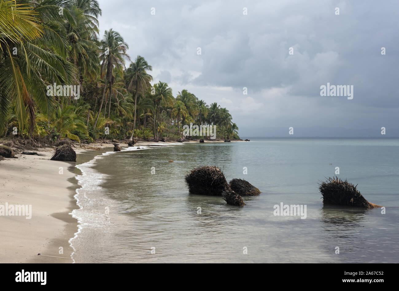 Vue panoramique sur la plage de Boca del Drago Panama Banque D'Images