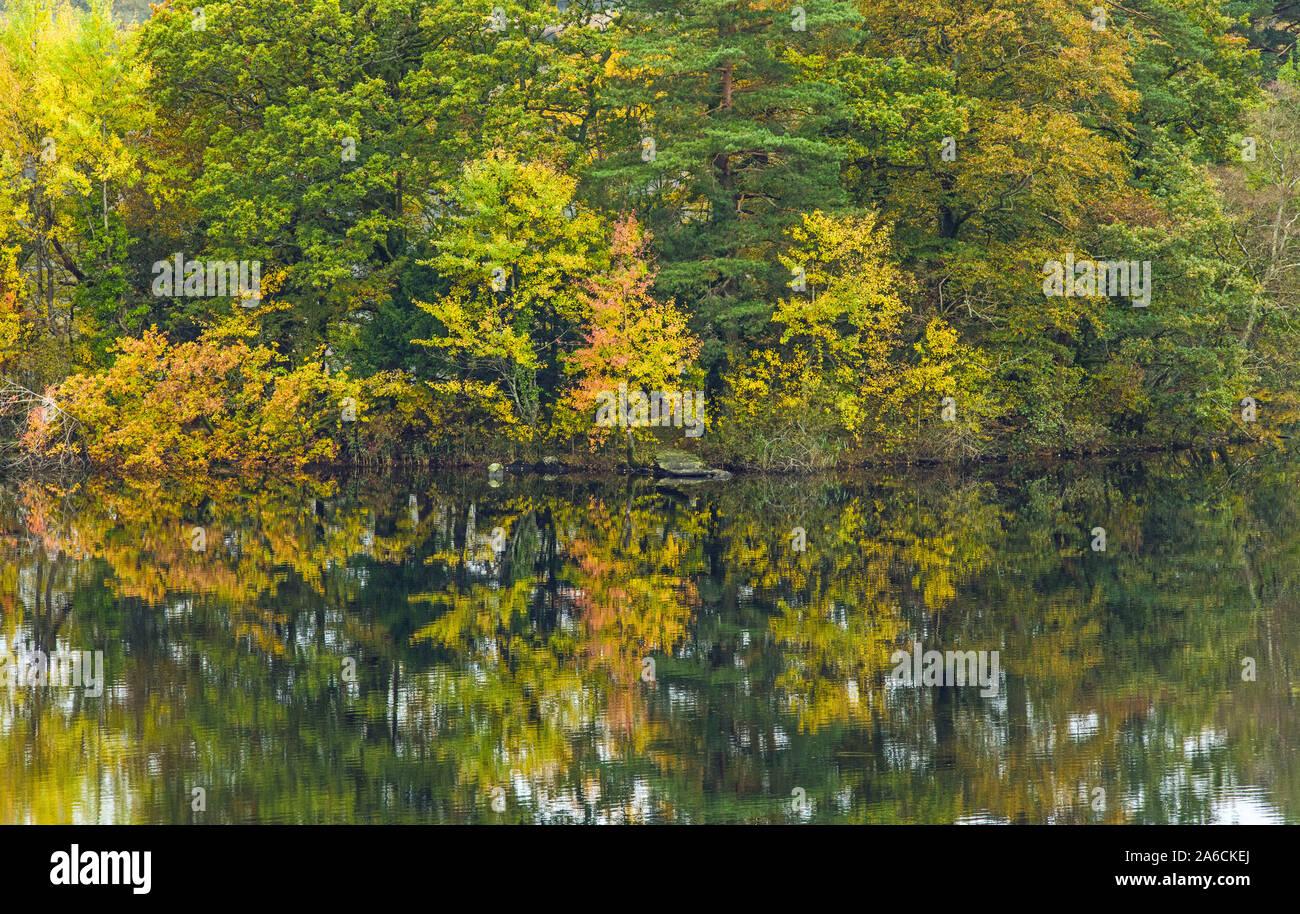 Réflexions à Rydal Water dans le Parc National de Lake District Cumbria. Le fleuve Rothay traverse les deux lacs de l'eau et Rydal Grasmere. Banque D'Images