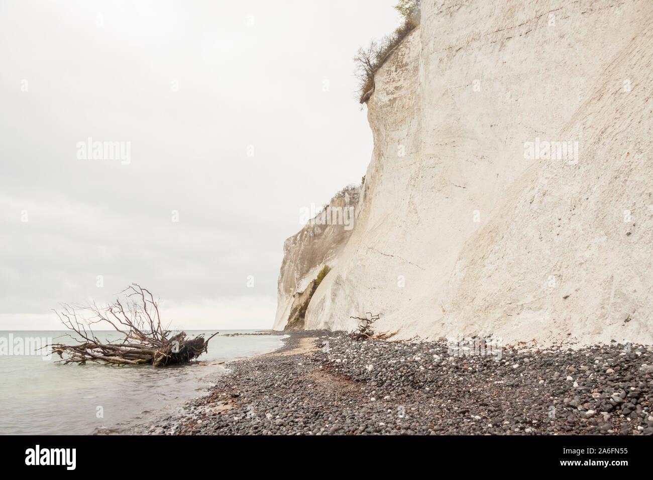 Paysage sur mon, Danemark - White Cliffs. Banque D'Images