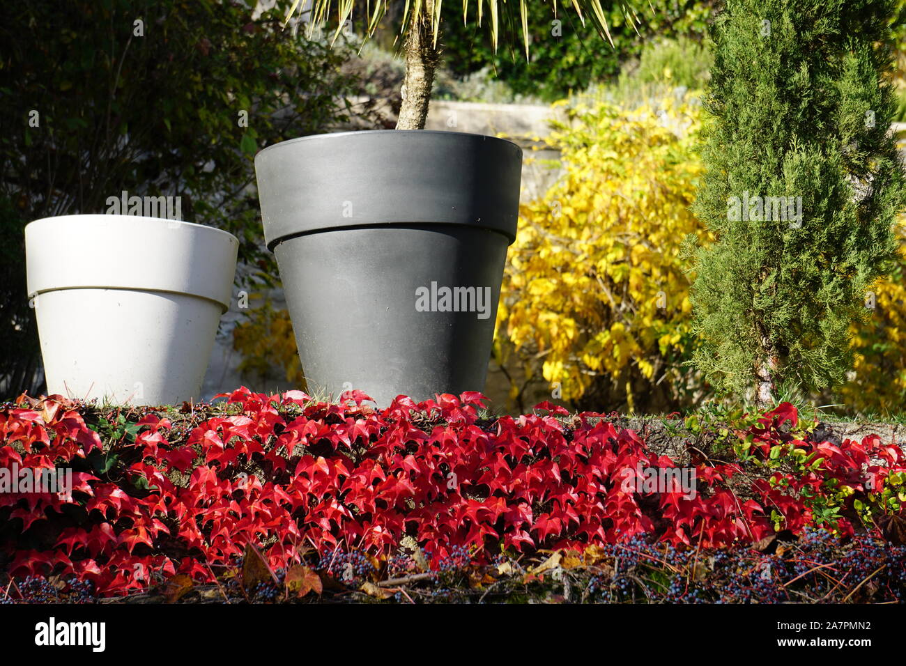 Gros Pot De Fleur En Pierre grands pots photos & grands pots images - alamy