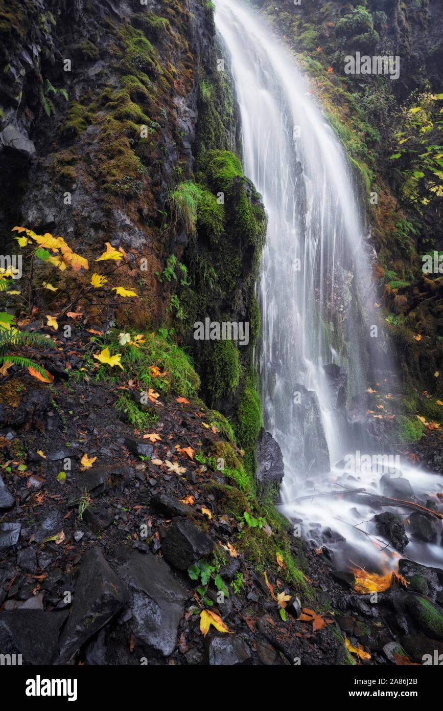 Flux d'automne étonnant Creek sur Lancaster tombe dans l'Oregon's Columbia River Gorge National Scenic Area. Banque D'Images