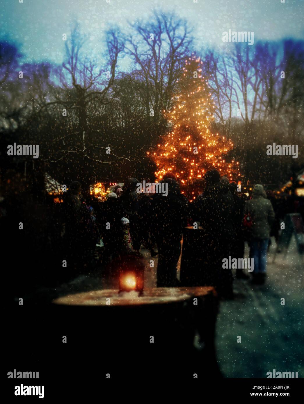 Munich, Allemagne - Marché de Noël au jardin anglais dans la nuit avec un arbre de Noël et de neige Banque D'Images