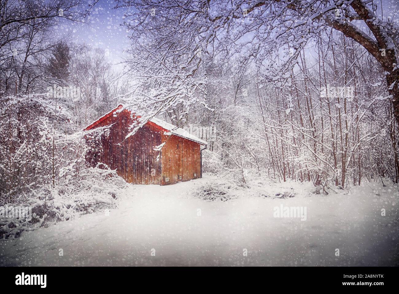 Chalet dans les bois en hiver sous une tempête de neige avec une couverture blanche sur le sol et sur les branches des arbres. Banque D'Images