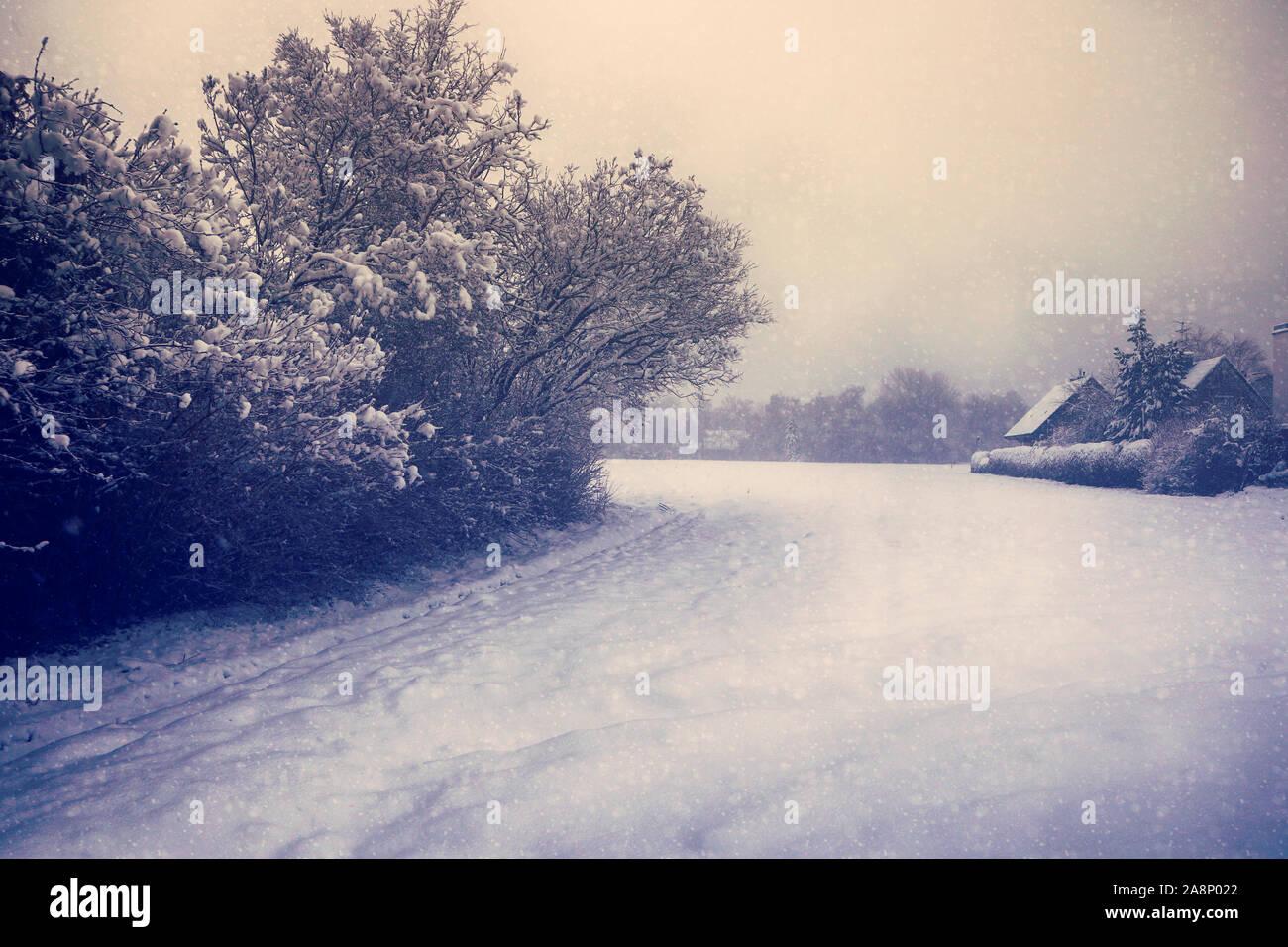 Pays d'hiver magnifique paysage à la tombée de la nuit: le champ couvert par la neige, ferme, arbres et de neige Banque D'Images