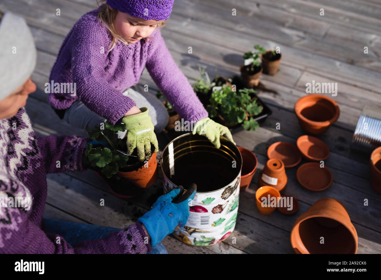 Mère et fille de plantes en pot Banque D'Images