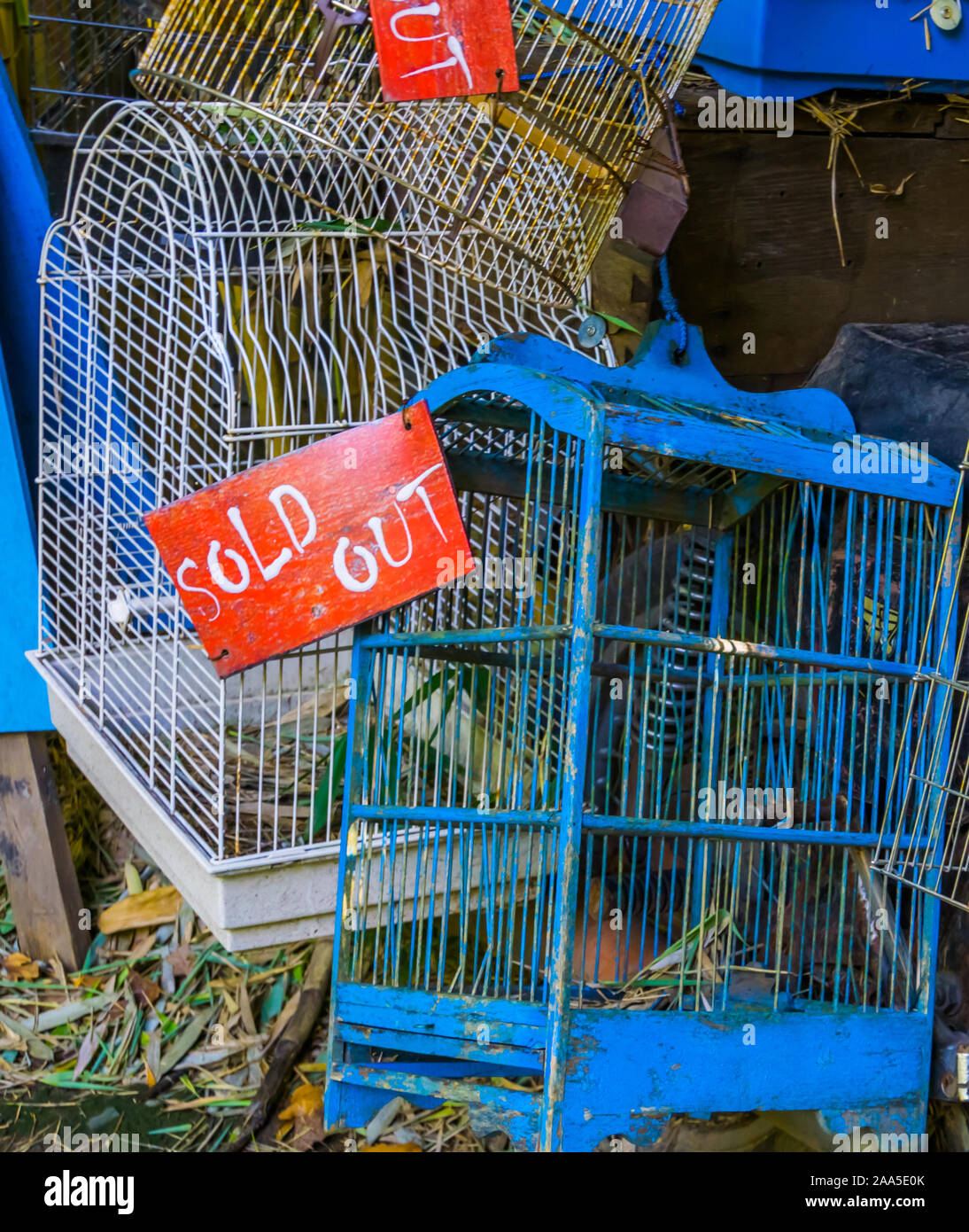 Les cages à oiseaux en libre avec sold out sign, commerce des animaux en Asie, Animal shop background Banque D'Images
