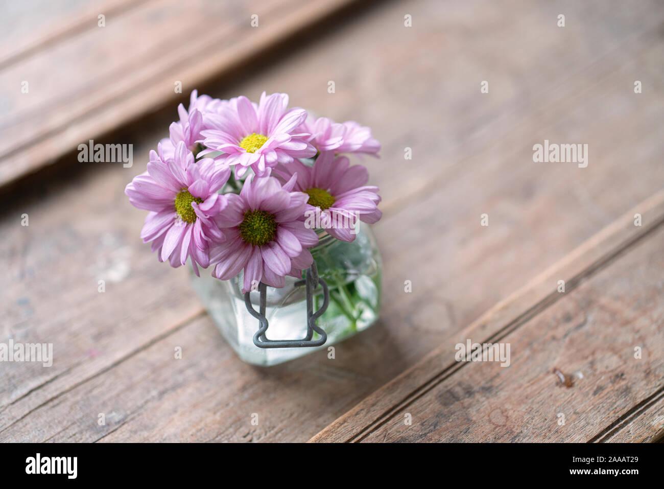 Purple Asters d'en haut dans un petit vase en verre sur un meuble en bois miteux cracky Banque D'Images
