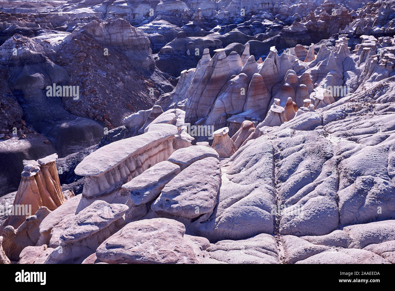 Bisti Badlands De-Na-Zin rock formations in New Mexico, USA Banque D'Images