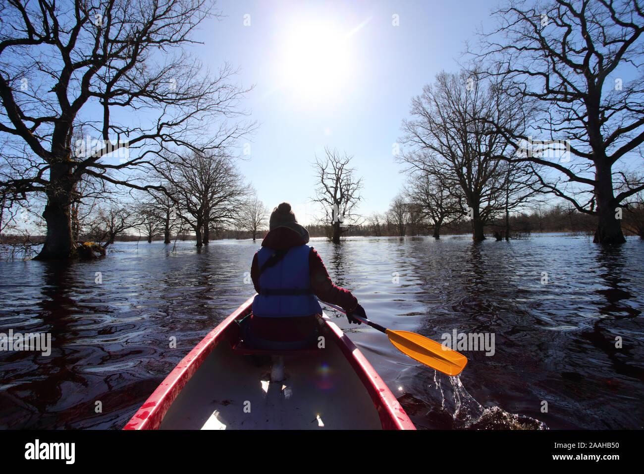 Cinquième saison canot à Rio Dulce, woman on canoe avec palettes de navigation dans les forêts, l'Estonie au printemps Banque D'Images
