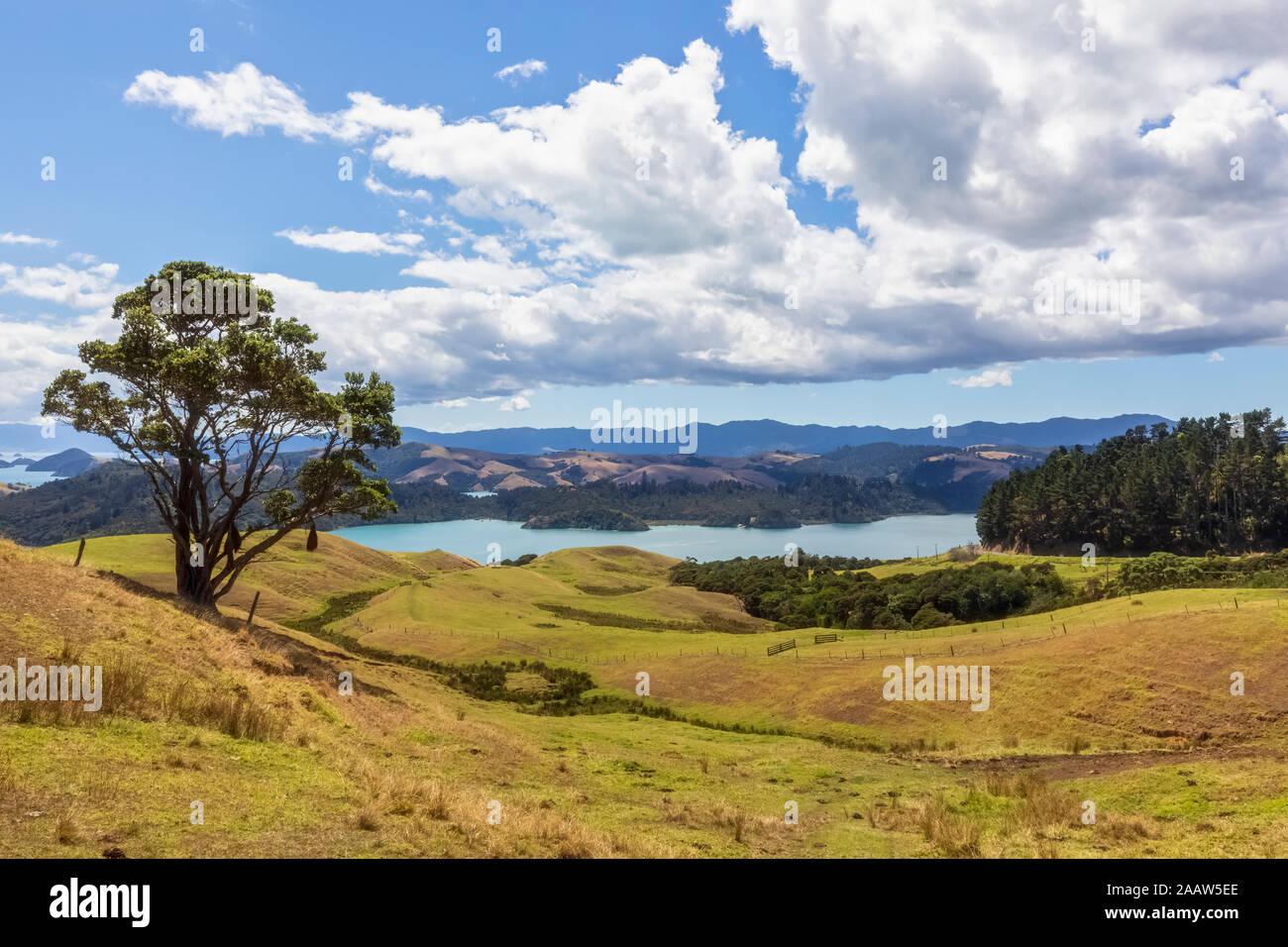 Nouvelle Zélande, île du Nord, Waikato, paysage pittoresque contre ciel nuageux Banque D'Images