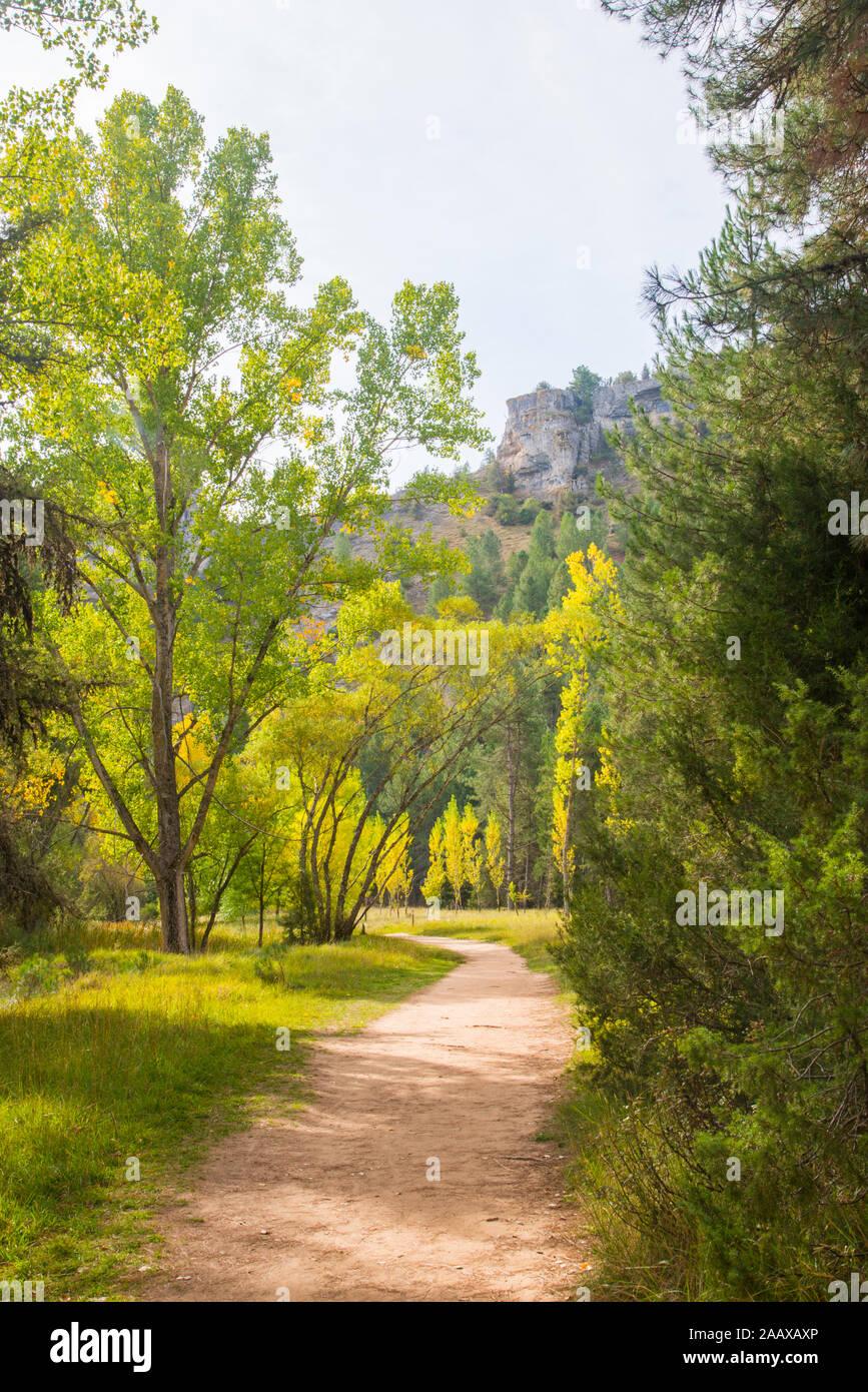 Chemin de la rivière. Cañon del Rio Lobos réserve naturelle, la province de Soria, Castilla Leon, Espagne. Banque D'Images
