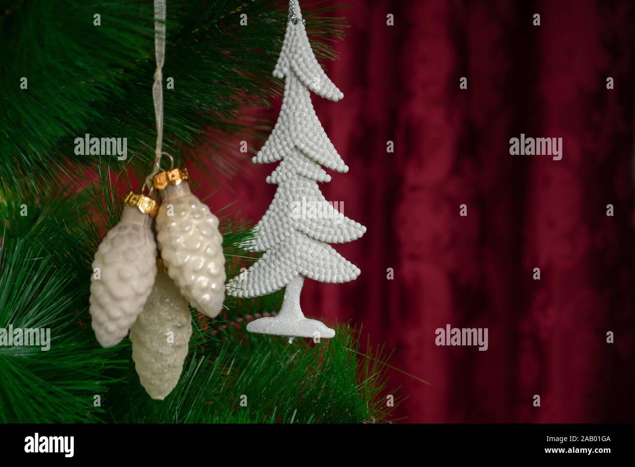Weißkiefer 30 graines pinus sylvestris sylvestre rotföhre FORCHE blanc pin