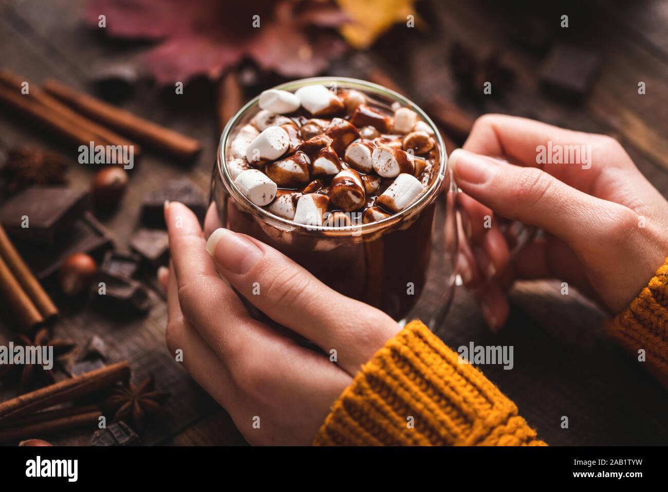 Female Hands Holding tasse de chocolat chaud avec de la Cannelle. Confort alimentaire savoureux. Boisson chaude pour l'automne et l'hiver Banque D'Images
