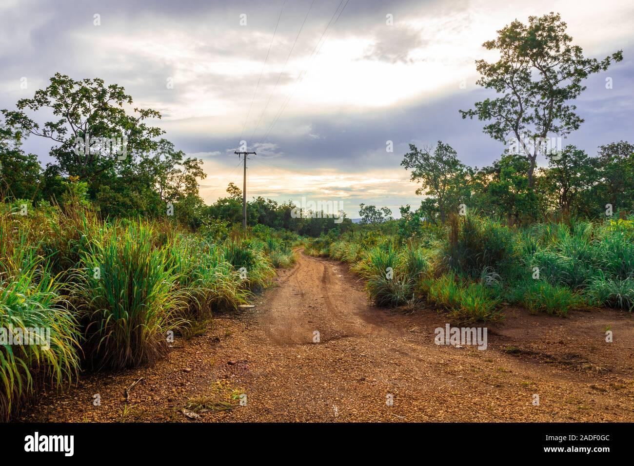 Route de terre dans la campagne brésilienne Banque D'Images