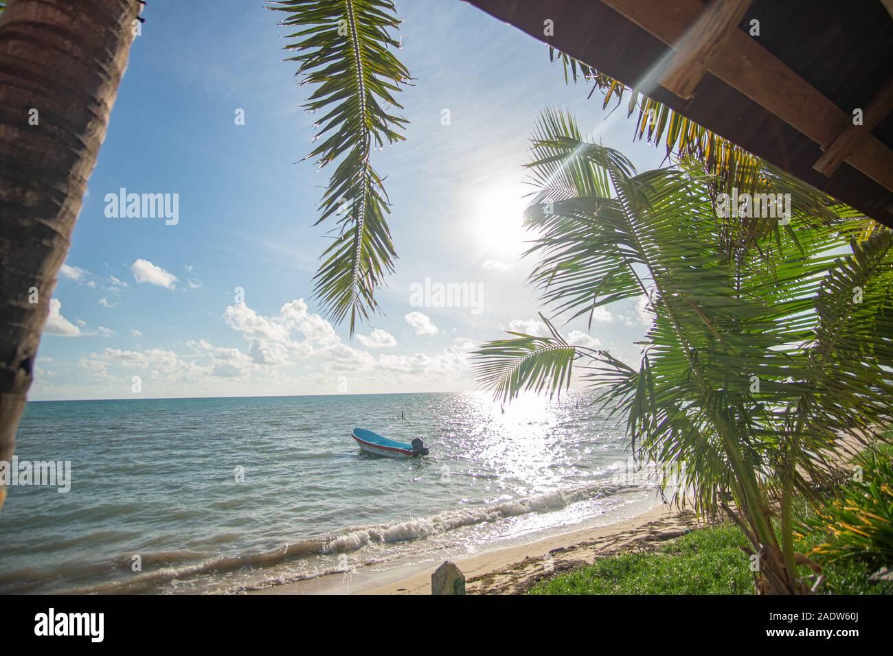 Plage paradisiaque de Punta Allen à la mer des Caraïbes Banque D'Images