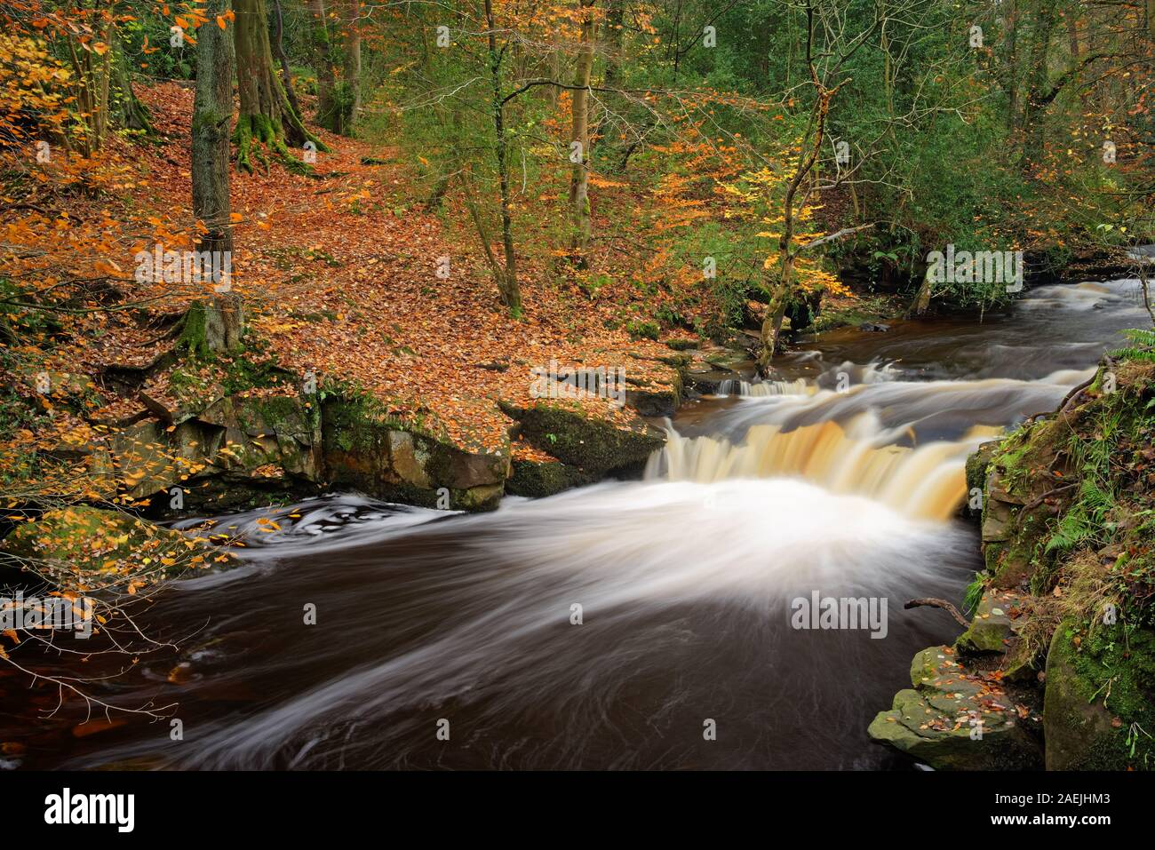 UK,South Yorkshire,Sheffield,River Cascades Rivelin en automne Banque D'Images