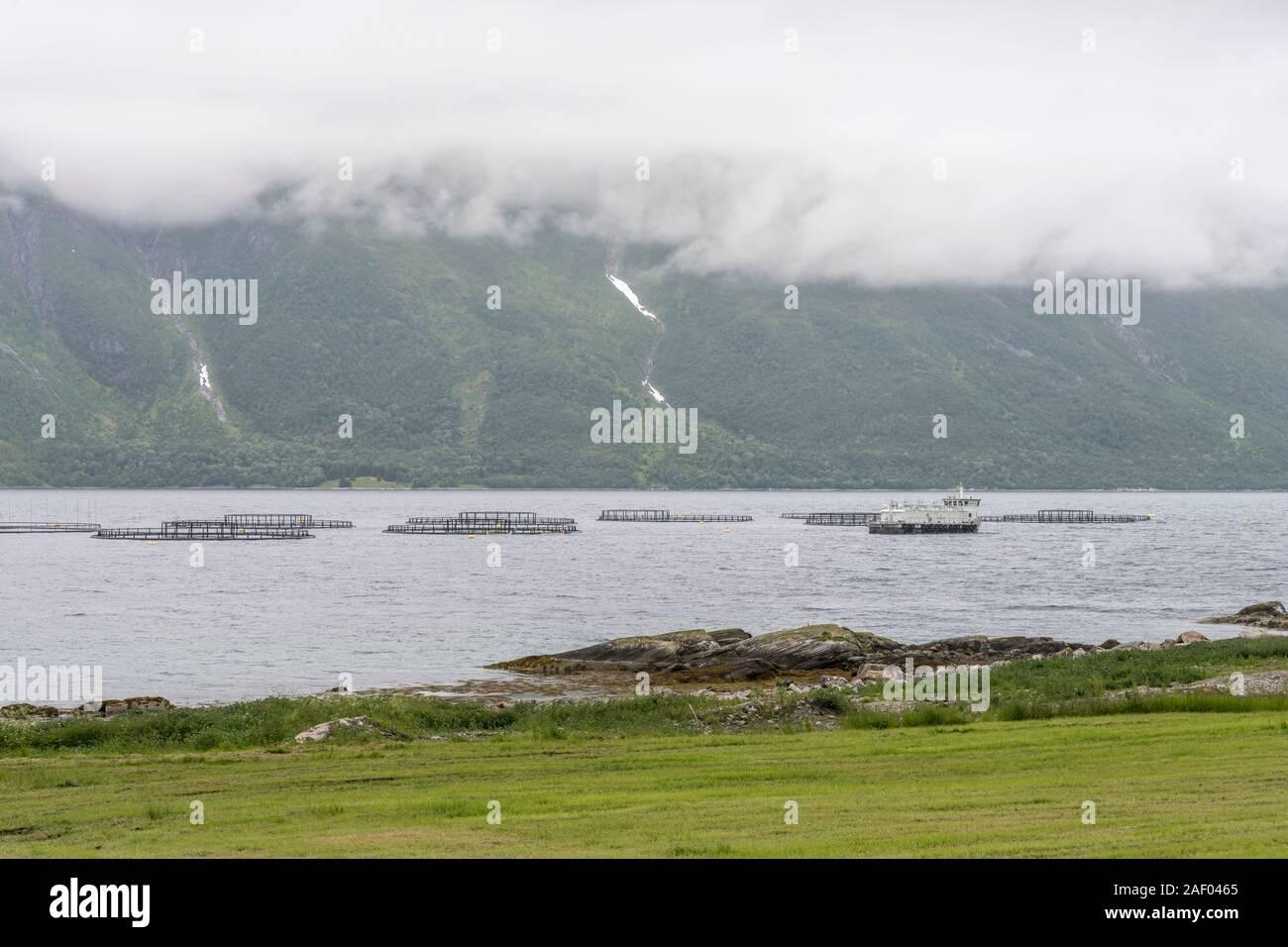 Ferme de poissons sous les nuages bas dans les eaux du fjord, tourné en été lumineux nuageux lumière près de Refsnes, Hinnoya, Vesteralen, Norvège Banque D'Images
