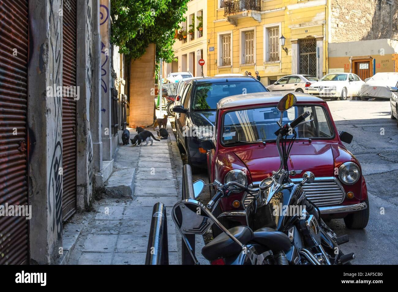 Un groupe de chats sort d'une attente dans un mur sur un trottoir dans la région de Plaka d'Athènes, Grèce. Banque D'Images
