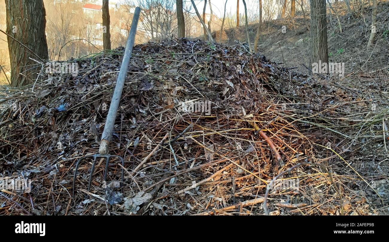 Compost De Feuilles D Érable bark compost photos & bark compost images - alamy