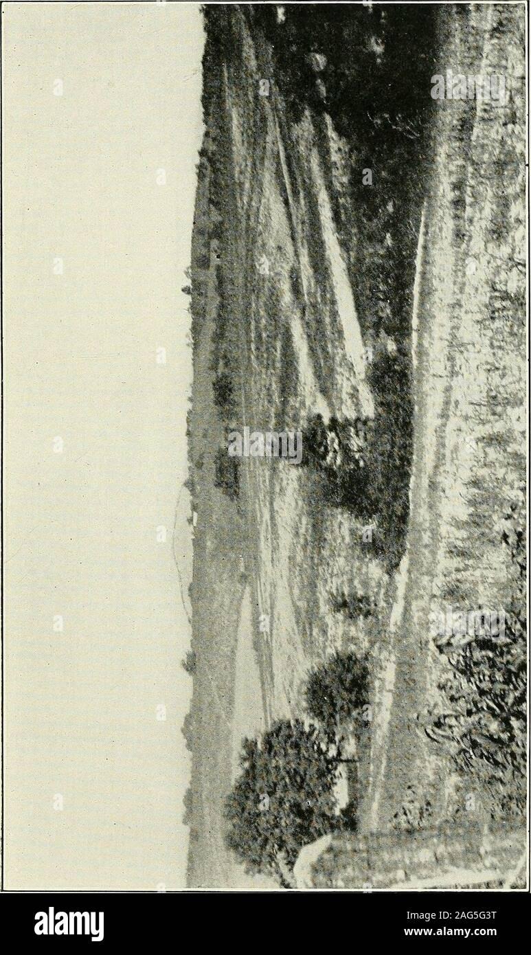 . Jefferson, Berkeley, et Morgan comtés, par G.P. Grimsley, assistant géologue. I.C. White, géologue de l'état. deuxième récolte. M. J. Garland Hurst, de Harpers Ferry, considère que l'eau-powersaw mills était autrefois commun le long des cours d'eau et découpe uniquementpour pas l'usage domestique mais à des fins commerciales. Il y a de l'eau d'stillone-scierie en ordre de marche à Halltown sur FlowingRun. Des scieries à vapeur ont fonctionné de façon irrégulière dans le comté formany ans. Joseph Martin, un jeune écrivain sur le ofVirginia 2 listes de ressources, des scieries pour le comté de Jefferson en 1835. L'un de ces,situé à Harpers Fer Banque D'Images