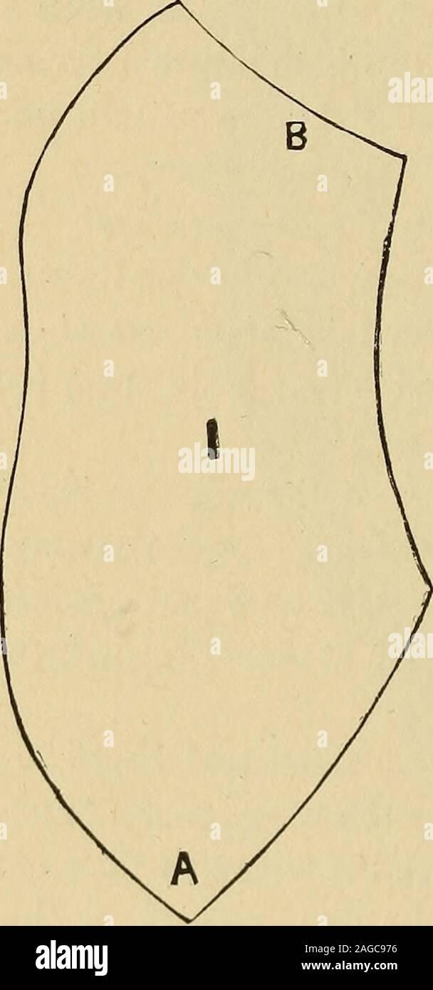 . Industrielle du Blakelee cyclopedia, un simple guide pratique ... À titre de référence et un réservoir d'informations utiles. Plus de deux cents illustrations. les oiseaux ou aile goglus et appuyez sur itout télévision jusqu'à ce qu'il sèche, et vous aurez une belle fleur double, qui n'a besoin d'unebrosse métallique tige. Des prairies et des plumes de pintade make nice fleurs tacheté de pois plumes.pintade réponse bien vert, et certaines des plumes sur son bodymake belles fleurs veloutées. Utiliser deux tailles de fil-les pour les tiges et le vent thestem à plus fine de chaque pétale de fleurs telles que les roses avant qu'ils sont fo Banque D'Images