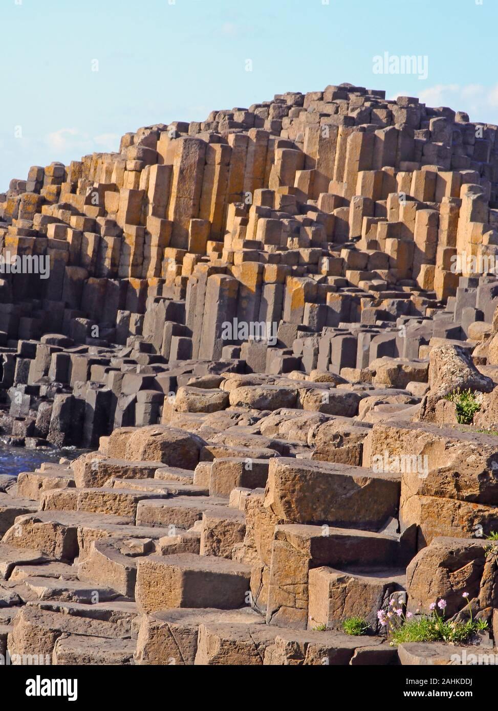 Colonnes de basalte massif de la Giant's Causeway, comté d'Antrim, en Irlande du Nord, Royaume-Uni. Banque D'Images