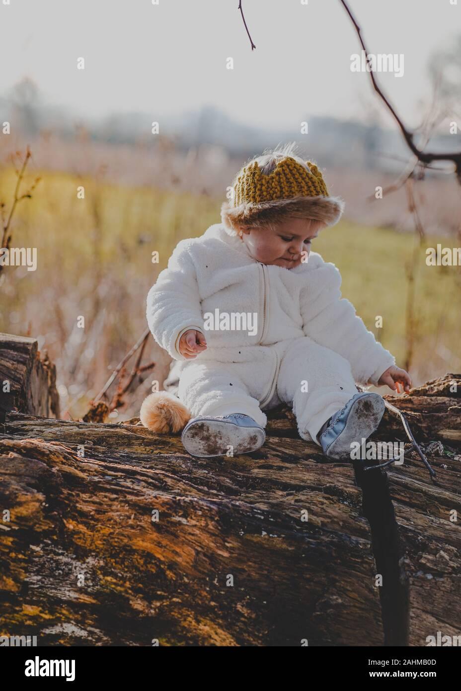 Petit garçon habillé en Max d'où les choses sauvages sont dans les bois Banque D'Images