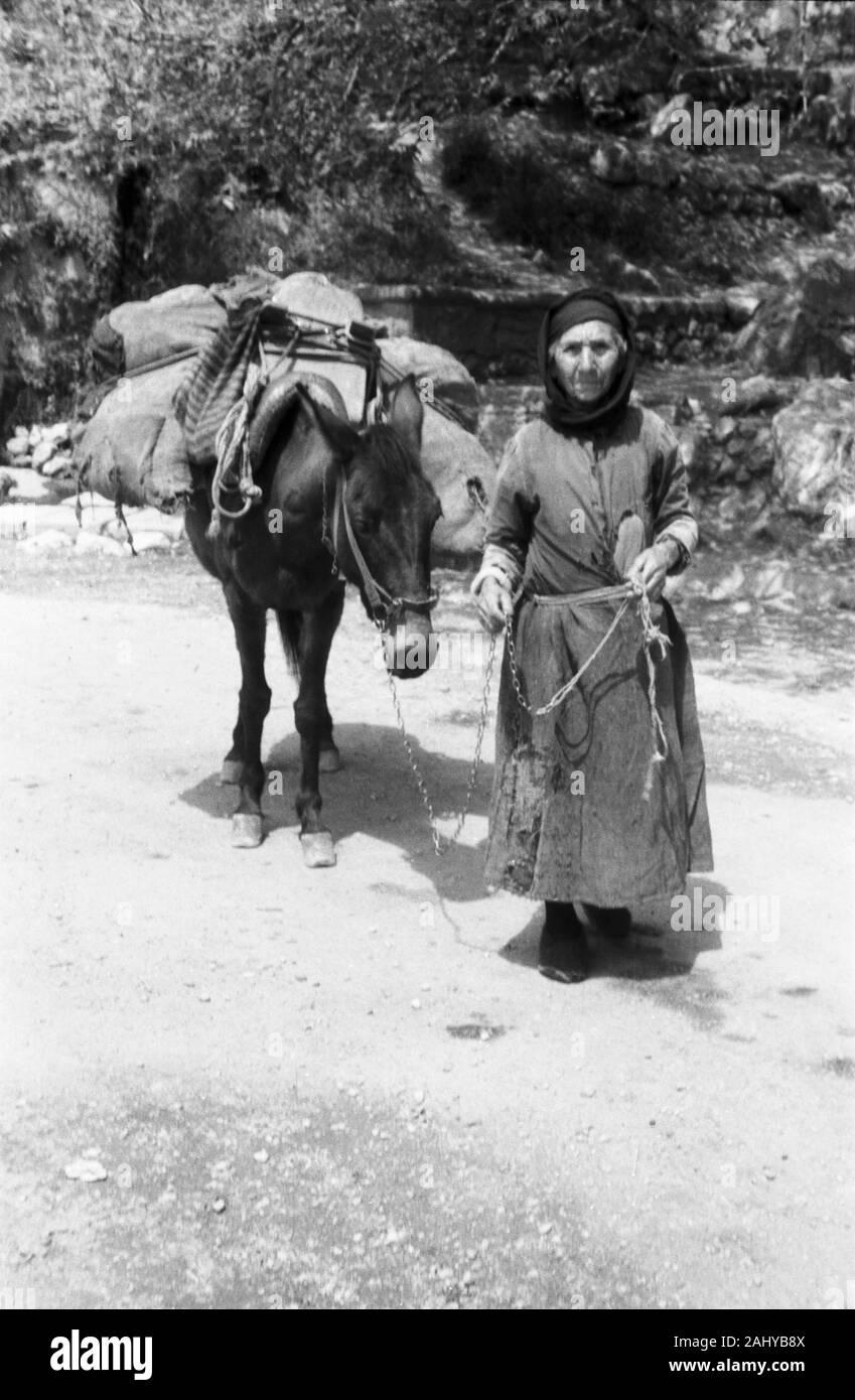 Auf pferd frau Können Mädchen