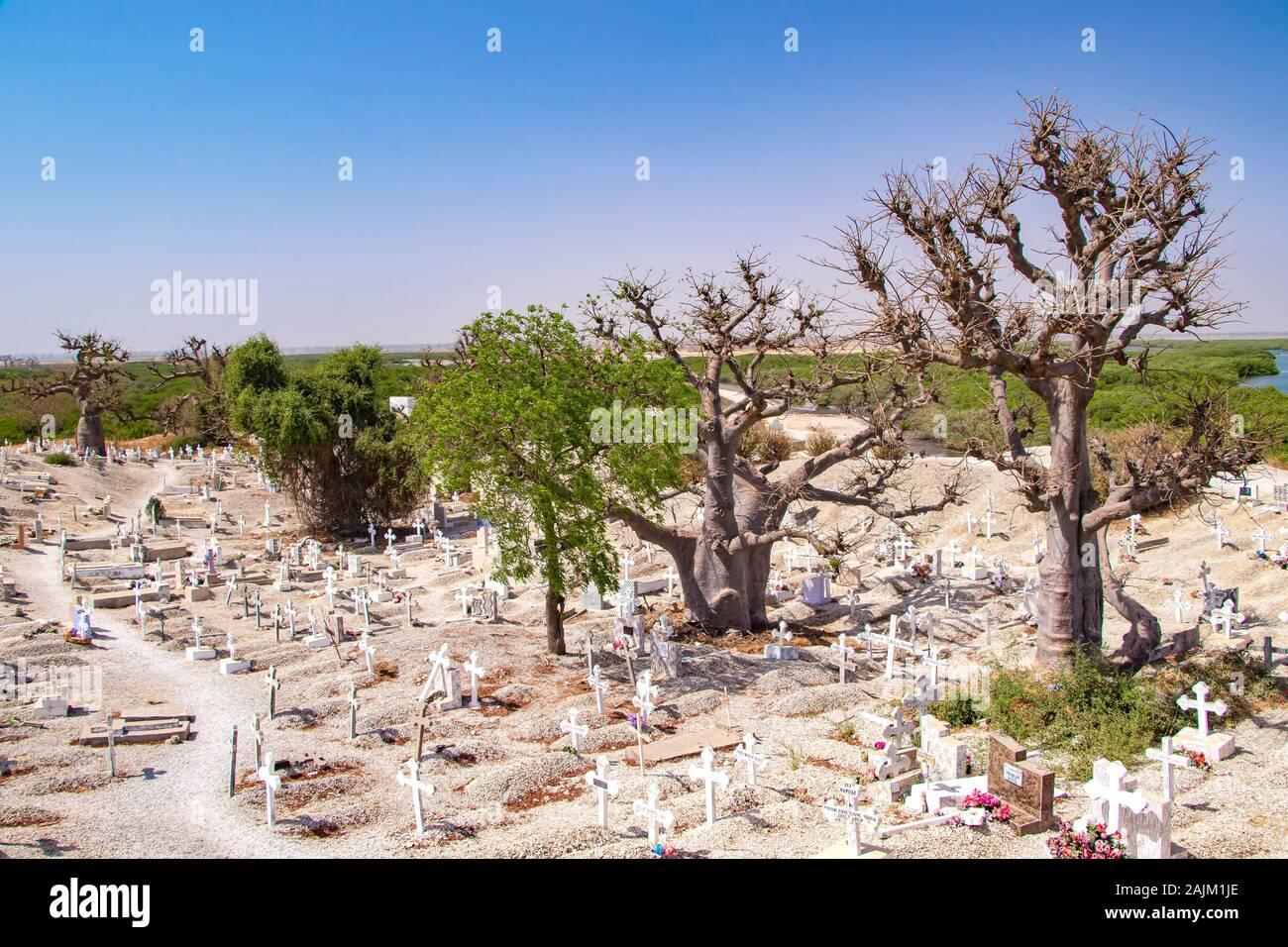 Joal-Fadiout, Sénégal - avril 26, 2019: les Baobabs sur le cimetière chrétien. Joal-Fadiouth ville et commune dans la région de Thiès à la fin de la Banque D'Images