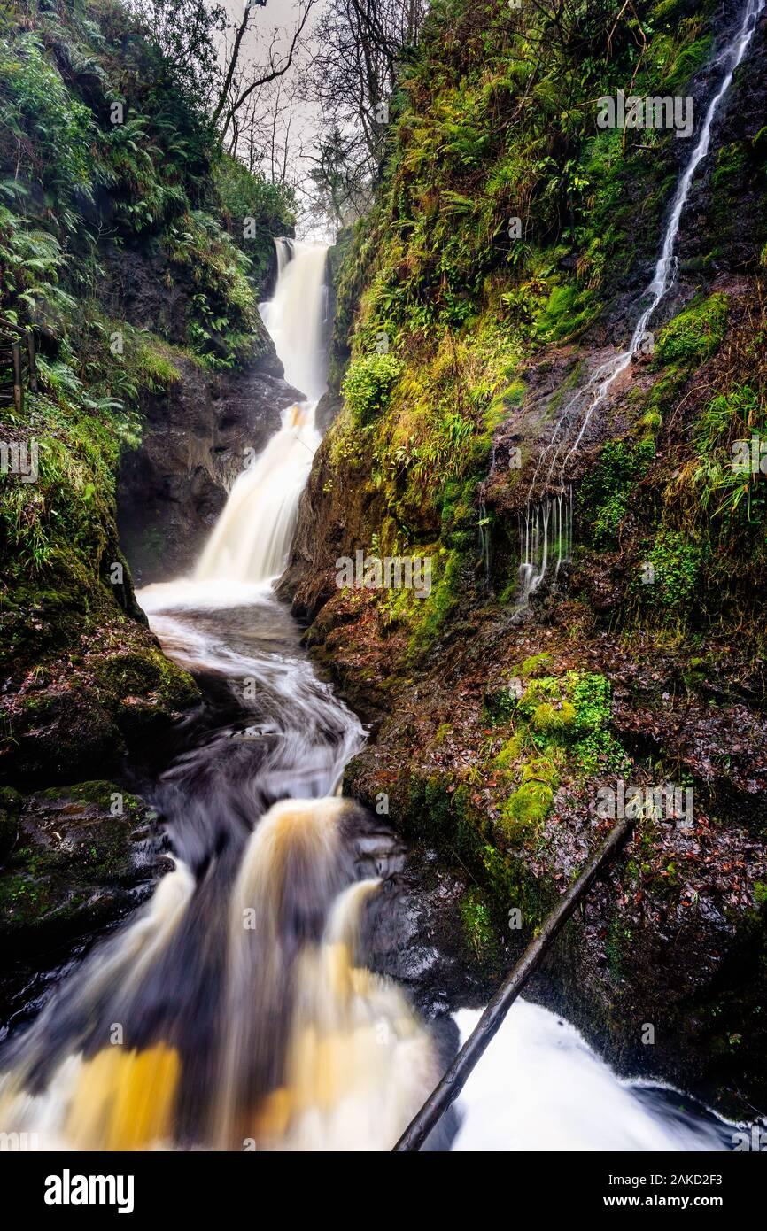 Les cascades et chutes sur un ruisseau de montagne ou un ruisseau, entre les roches moussues, dans le parc forestier de Glenariff en automne, le comté d'Antrim, en Irlande du Nord Banque D'Images