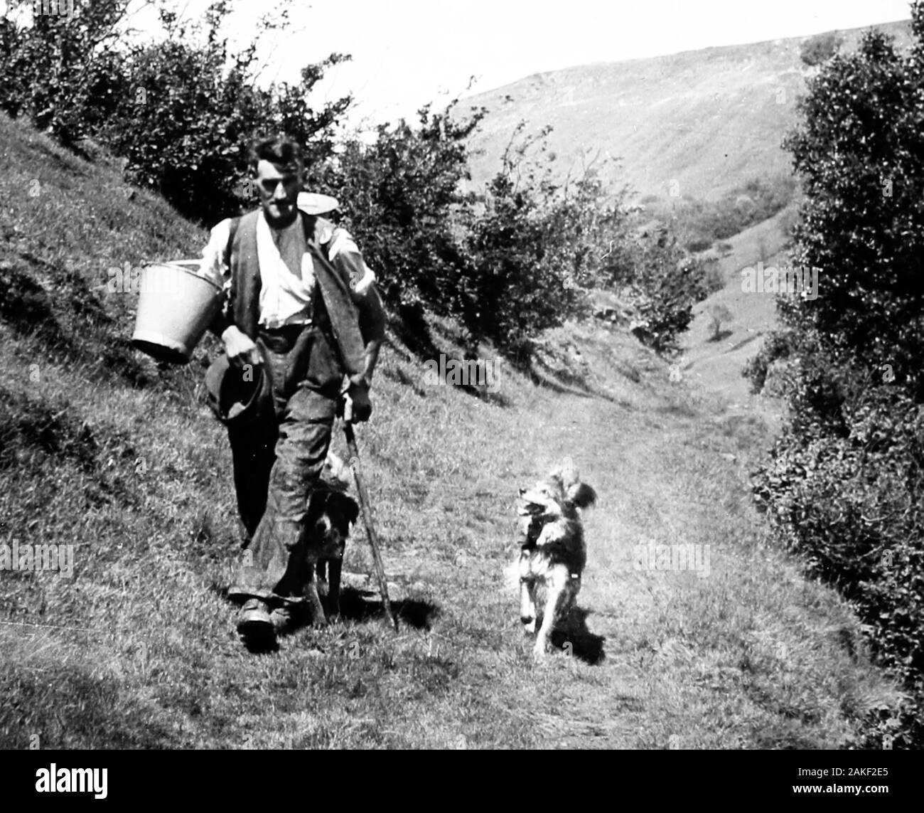 Agriculteur et chien, Swaledale, Yorkshire au 1940/50s Banque D'Images