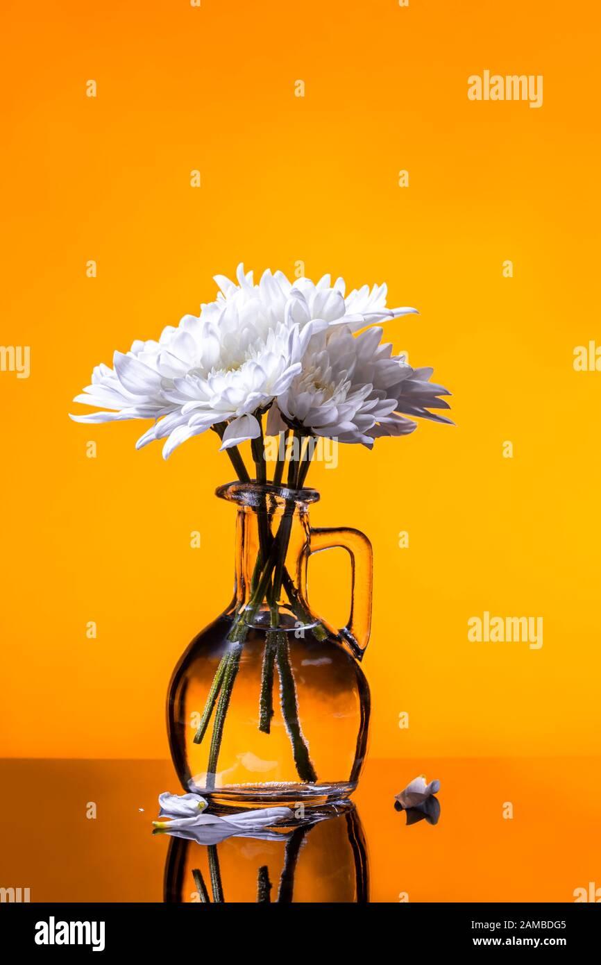 Fleurs blanches bouquet minimal dans vase en verre sur fond jaune doré - récolte verticale Banque D'Images
