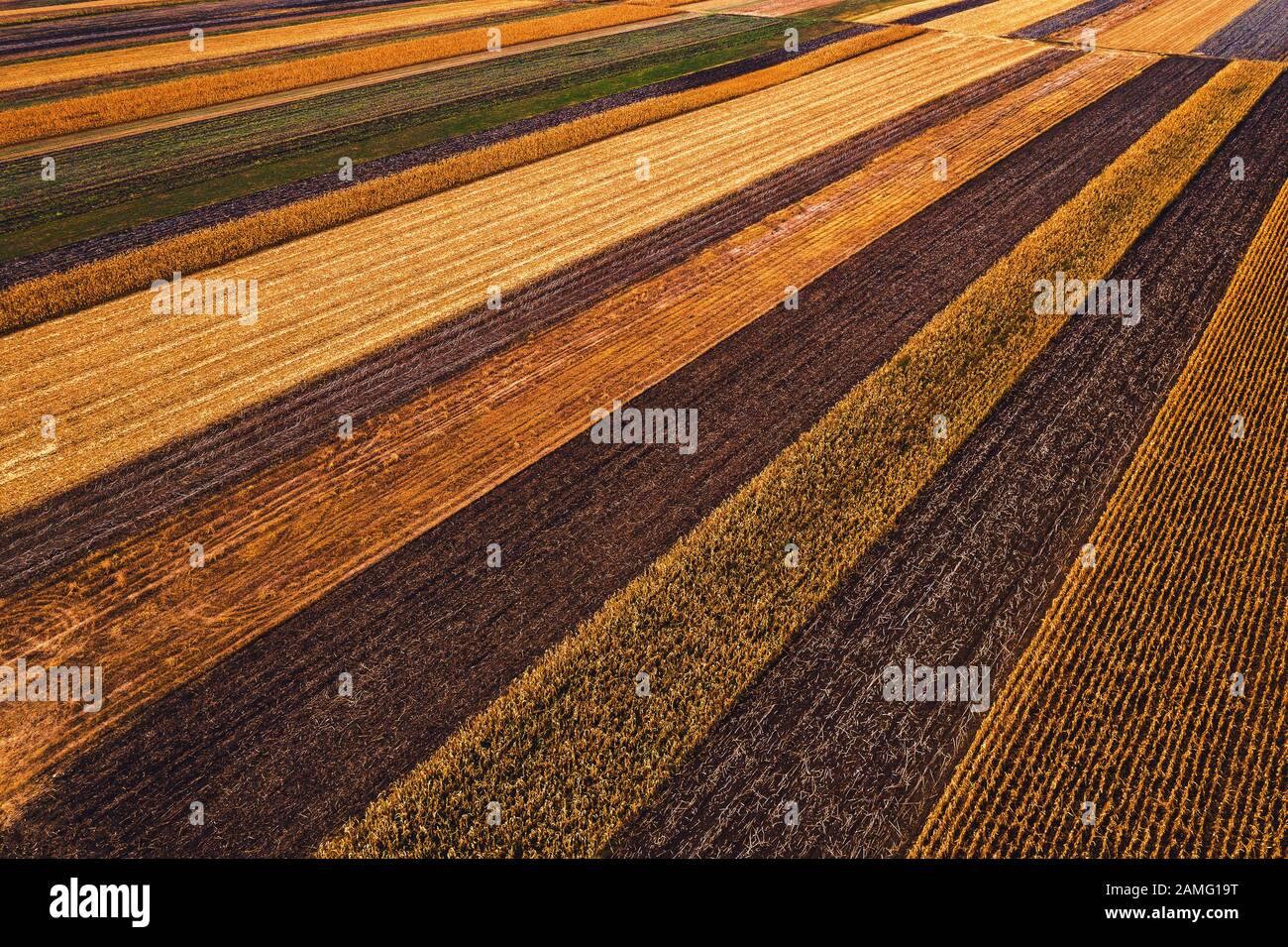 Champs agricoles d'en haut, photographie de drone. Vue aérienne des patchwork colorés de la campagne qui s'estomisent dans une perspective décroissante, Banque D'Images