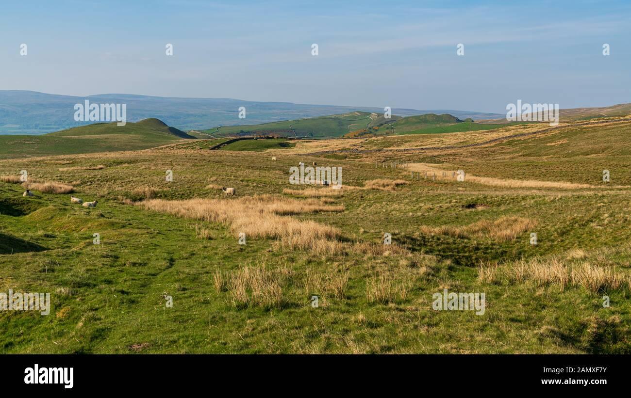 Paysage près de la route B6270 entre Birkdale et Nateby, Cumbria, England, UK Banque D'Images
