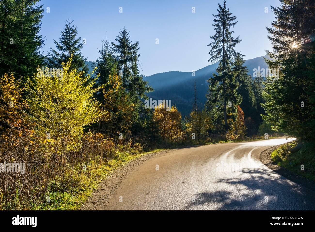 Parc National des Tatras. Paysage d'automne. Route de Morskie Oko. Banque D'Images