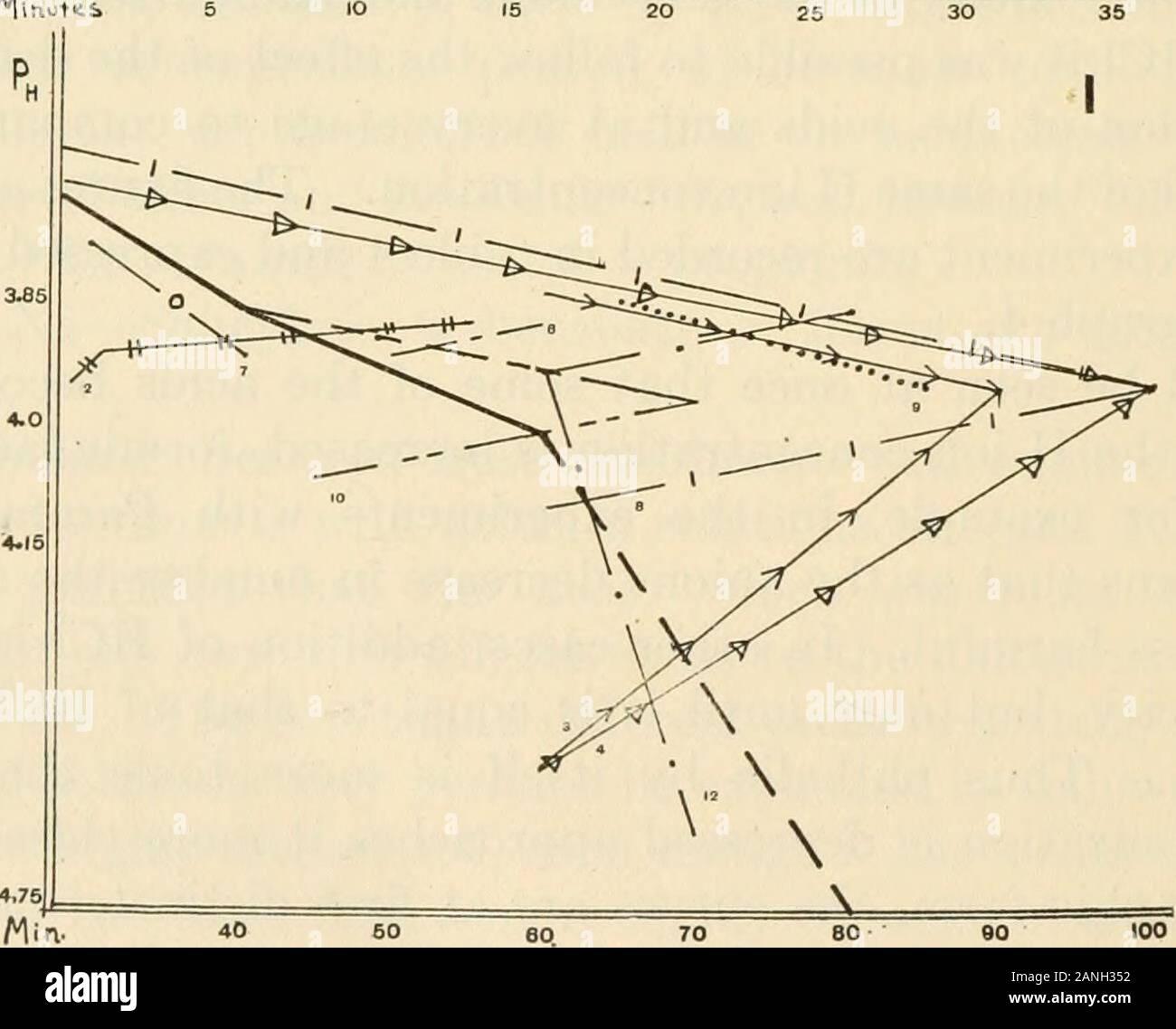 Le Journal of Experimental Zoology . ed en graphi-quement graphique 4. On voit tout de suite que certains acides de l'lesstoxic que le devenir de la concentration en ions H est augmentée, formique, lactique, andacetic par exemple, dans les expériences avec Paramoecium.Cela signifie qu'en tant que les anions diminuent en nombre l'acide atteint moins nocifs. Dans d'autres cas, l'addition de HCl increasesthe la toxicité, mais seulement jusqu'à ce qu'elle est égale à celle d'HCl de même identificateur de Ph. Ainsi par lui-même est plus phtalique toxiques que HCl,mais comme l'ionisation est appuyée l'approche plus étroitement;, désignent toujoursla sous forme graphique, les courbes sont à la première distinction Banque D'Images