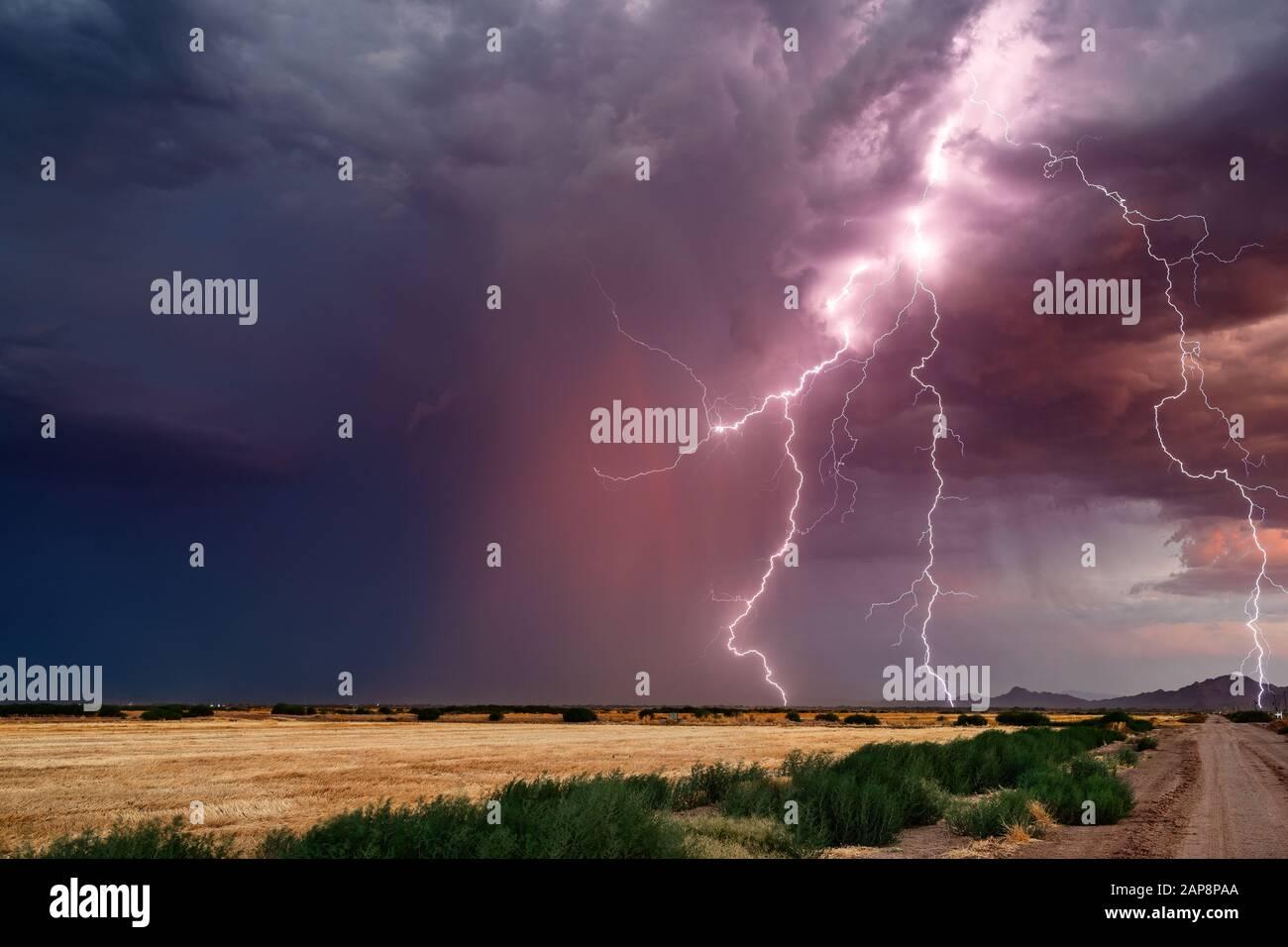 Des éclairs spectaculaires frappent d'une puissante tempête de mousson près de Marana, Arizona. Banque D'Images