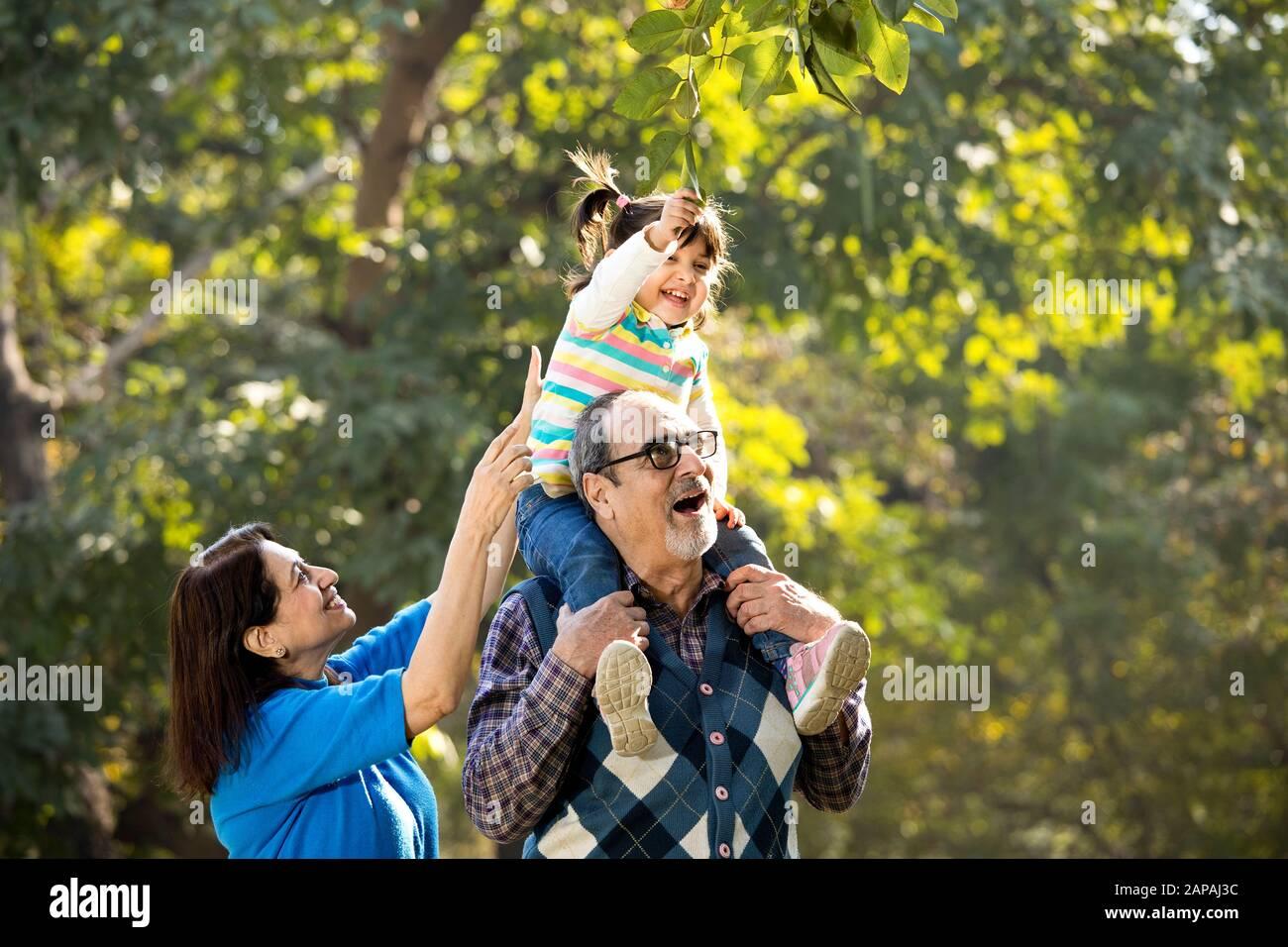 Grand-mère avec petite-fille assise sur l'épaule du grand-père au parc Banque D'Images