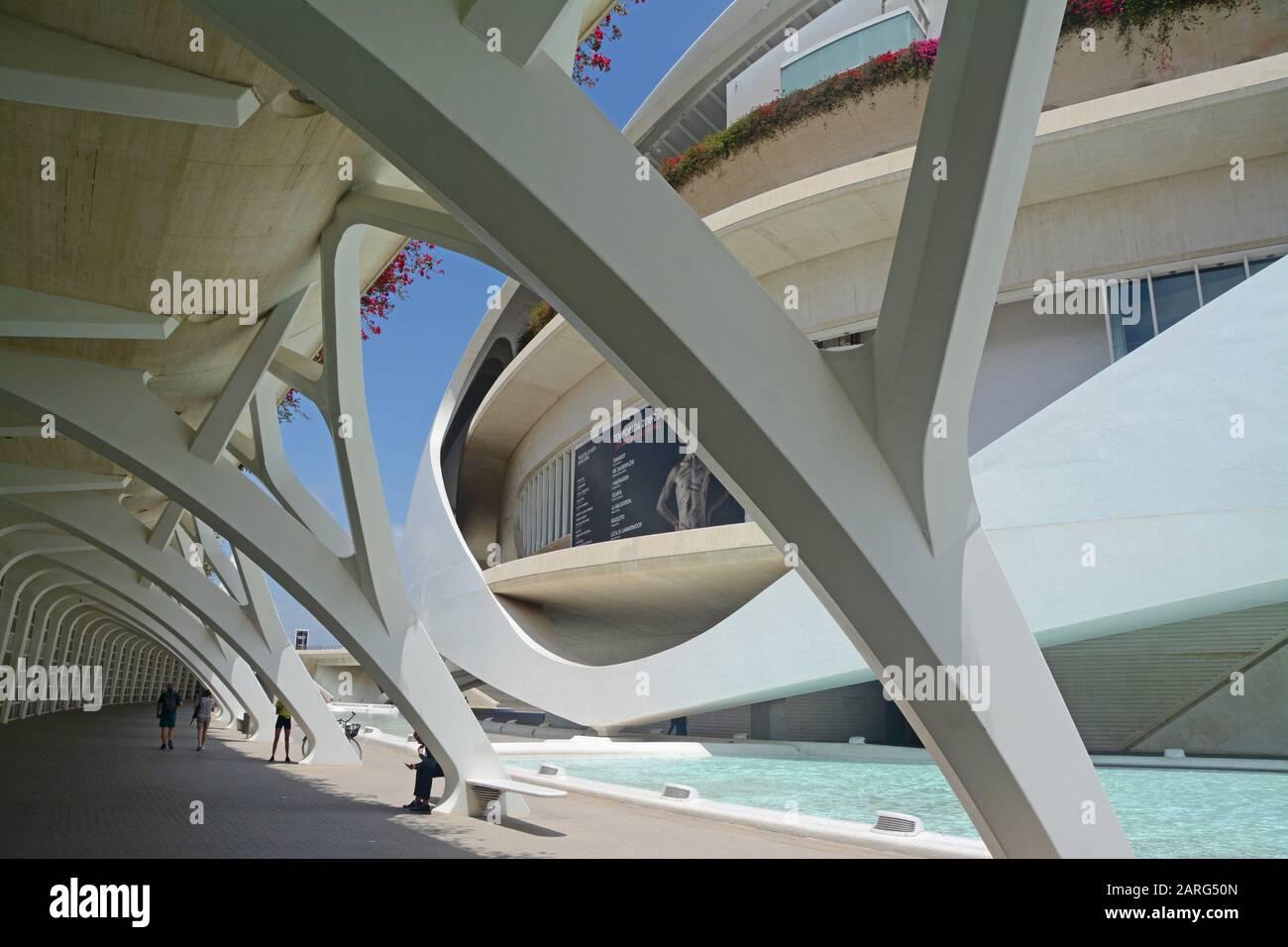 Palau de les Arts Reina Sofia. Ciudad de las Artes y las Ciencias, un complexe architectural, culturel et de divertissement conçu par Santiago Banque D'Images