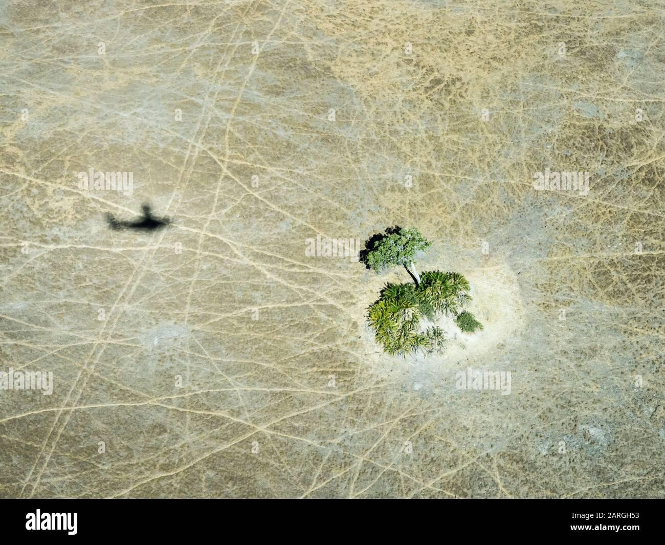 Vue aérienne du delta de l'Okavango au début de l'automne, au Botswana, en Afrique Banque D'Images