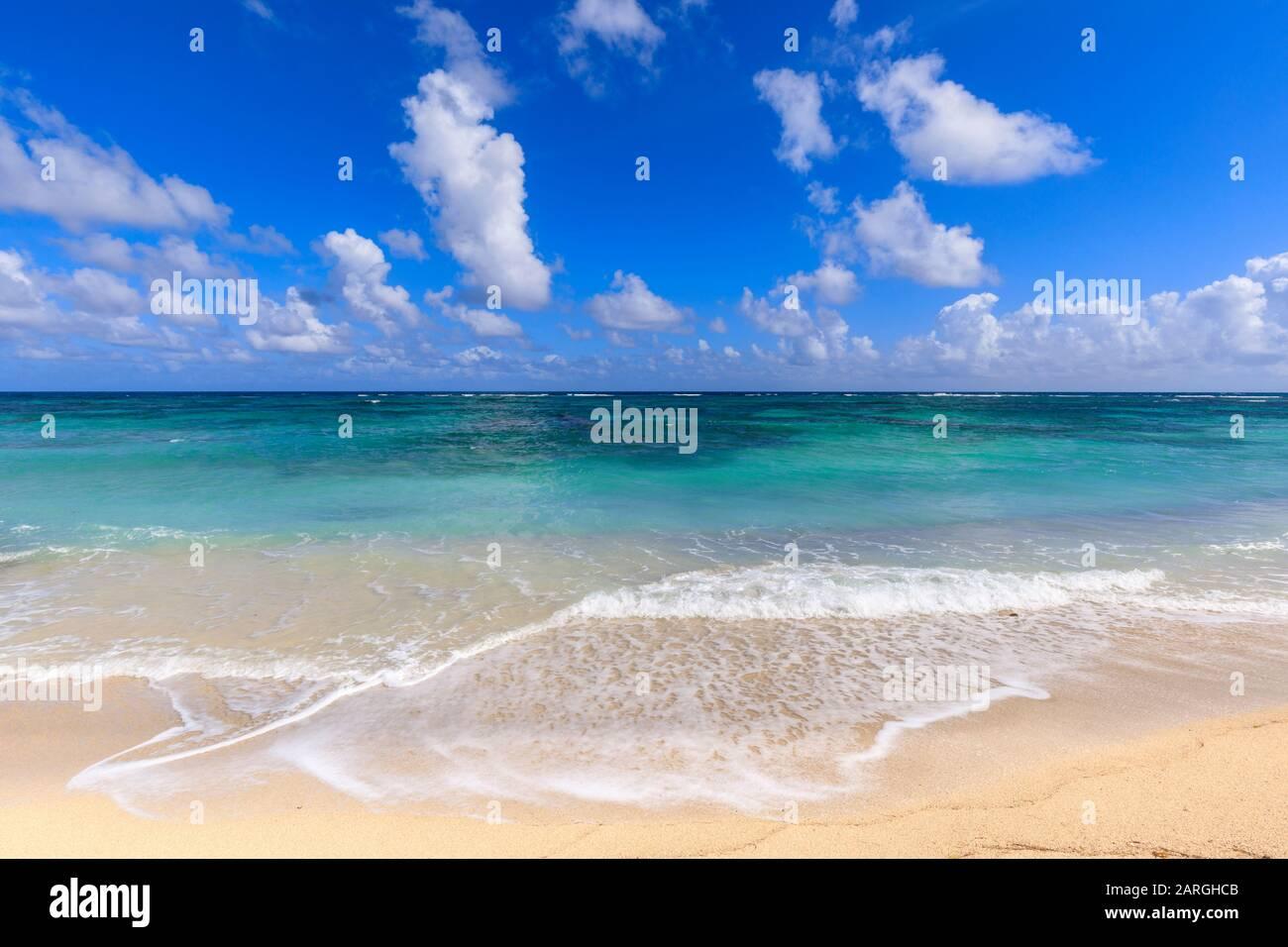 Plage De Nisbet, Mer Turquoise, Nevis, Saint-Kitts-Et-Nevis, Antilles, Caraïbes, Amérique Centrale Banque D'Images