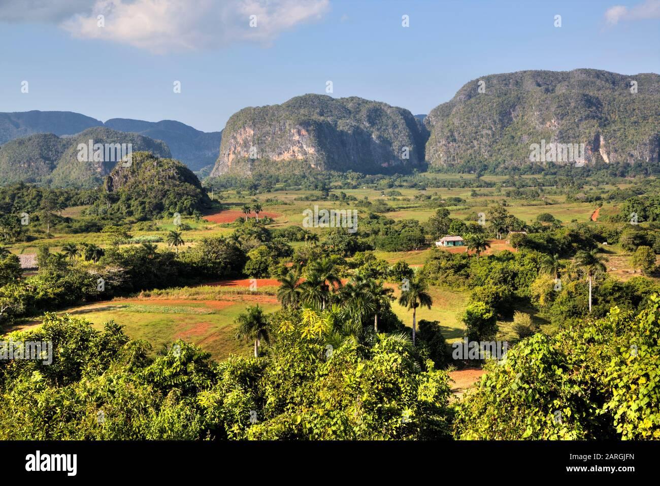 Vallée De Vinales, Site Classé Au Patrimoine Mondial De L'Unesco, Cuba, Antilles, Amérique Centrale Banque D'Images