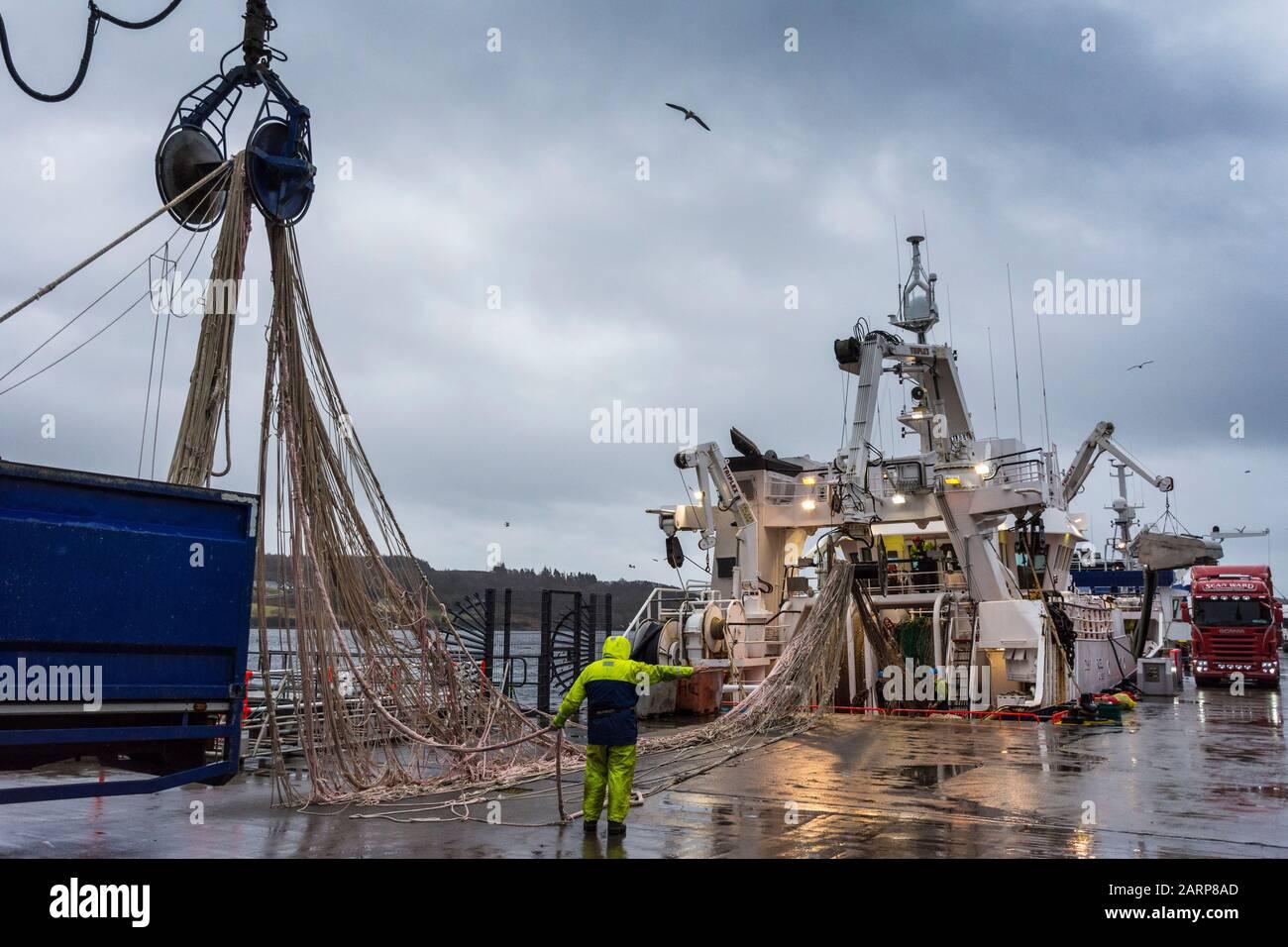 Killybegs, Comté de Donegal, Irlande. 29 janvier 2020. Les pêcheurs travaillent sur leurs filets de bateau par temps humide épouvantable, comme la Grande-Bretagne, pour présenter une loi visant à mettre fin aux droits de pêche automatiques de l'UE dans les eaux britanniques. L'accès futur au poisson dans les eaux britanniques serait une question pour le Royaume-Uni de négocier et de décider des règles que les navires étrangers doivent suivre. Banque D'Images