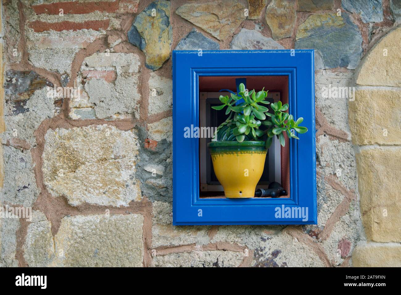 Gros Pot De Fleur En Pierre yellow flower pot blue wall photos & yellow flower pot blue