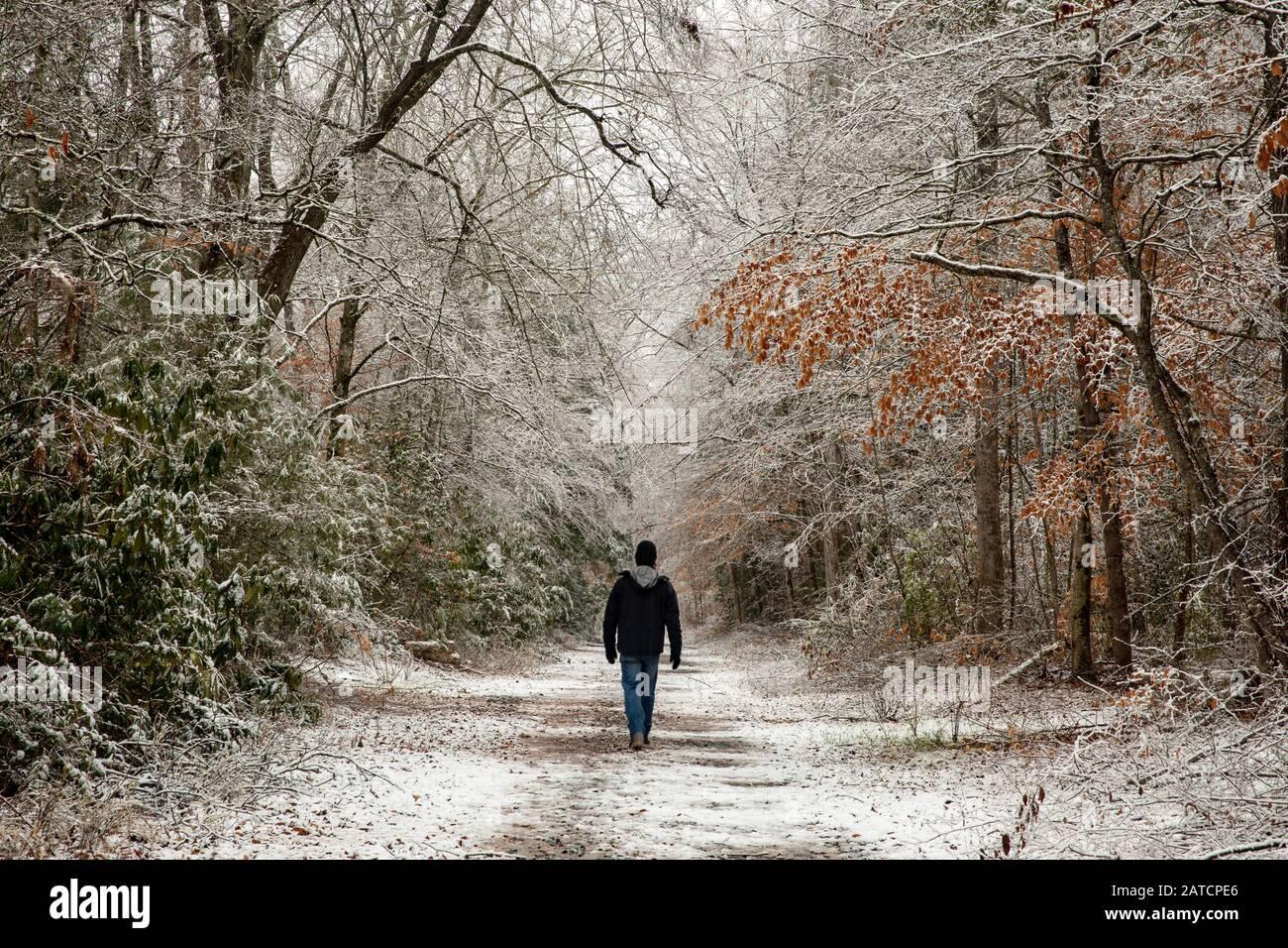 Randonneur sur un sentier enneigé dans la forêt nationale de Pisgah, près de Brevard, Caroline du Nord, États-Unis Banque D'Images