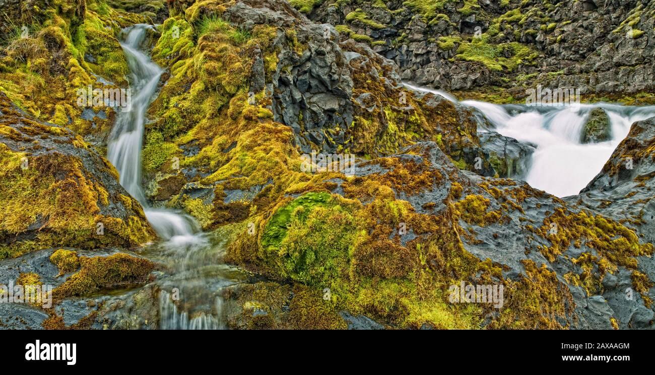 Cascades - eau potable et mousse, Islande Banque D'Images